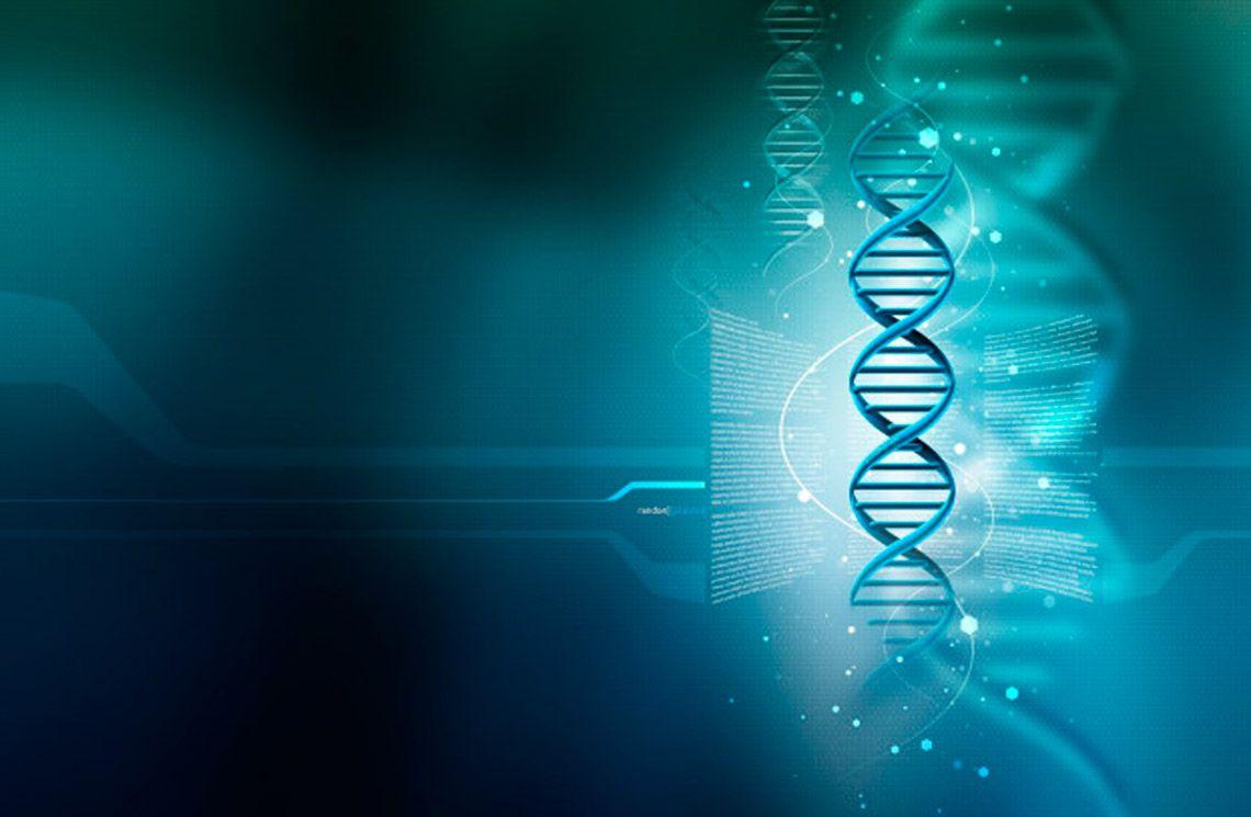 ДНК-тесты MYGENETICS (7, 17, 32 гена)